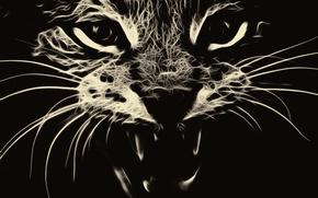 Картинка кошка, кот, абстракция, оскал