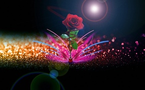 Картинка цветок, абстракция, роза, Креатив