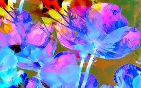 Картинка цветок, линии, природа, рендеринг, краски, лепестки, штрих