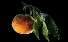 Картинка вода, оранжевый, пузырьки, апельсин