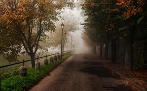Картинка дорога, осень, деревья, природа, парк, листва, ограда, Sergio Locatelli рhotography
