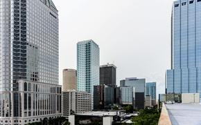 Картинка город, голубой, здание, небоскреб, Флорида, USA, США, blue, cloud, skyscraper, building, Florida, Tampa, Тампа, Tampa …