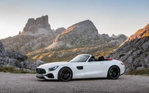 Картинка Белый, 2016, Металлик, Mercedes-Ben, AMG GT Roadster