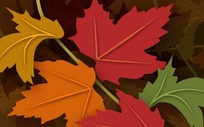 Картинка осень, листья, цвет, клен