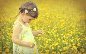 Картинка поле, цветы, ребенок, girl, field, flowers, child, маленькая девочка