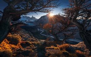Картинка осень, солнце, деревья, горы, ветки, растительность, Анды, Патагония, обои от lolita777