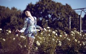 Картинка девушка, цветы, поза