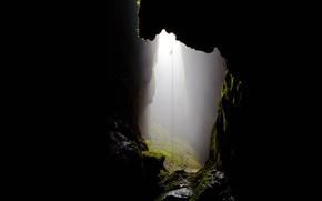 Картинка Новая Зеландия, туман, пещера, Уэйтомо