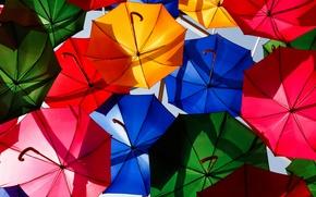 Картинка яркие, зонты, разноцветные