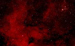 Обои диффузная, Садр область, рассеянное скопление, NGC 6910, является, эмиссионная, в созвездии, Лебедь, туманность