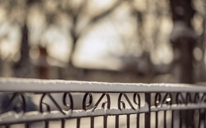 Картинка зима, макро, снег, природа, забор, ограда, размытость, прутья