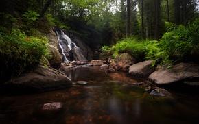 Картинка лес, деревья, камни, водопад, речка