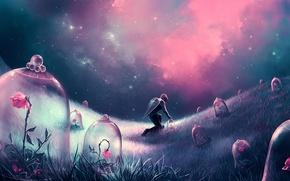 Картинка поле, цветы, ночь, человек, розы, звёзды, арт, щит