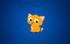 Обои жёлтый, фон, котик, синий, cats every where blue, кот