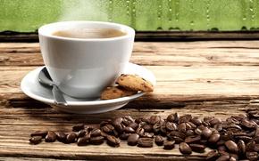 Обои coffee beans, кофейные зерна, cookies, печенье, кофе, coffee