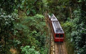 Картинка поезд, Бразилия, Рио-де-Жанейро, Национальный парк Тижука, гора Корковадо