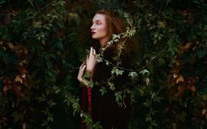 Картинка листья, девушка, макияж, профиль, Bella Kotak
