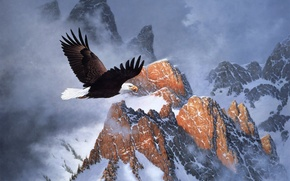 Обои зима, облака, снег, горы, полёт, орёл, живопись, Derk Hansen, белоголовый орел, Fire on the Mountain