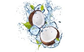 Обои лед, вода, кокос, ice, листочки, water, coconut, leaflets