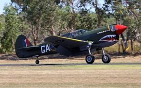 Картинка самолет, истребитель, Великобритания, авиашоу, пулеметы, club, military, американский, вооружение, коллекция, боке, Curtiss, одномоторный, Tomahawk, P-40, …