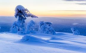 Картинка сугробы, Юлляс, снег, зима, деревья, панорама, Finland, Финляндия, Ylläs, Lapland, Лапландия