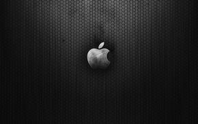 Картинка сетка, Apple, яблоко
