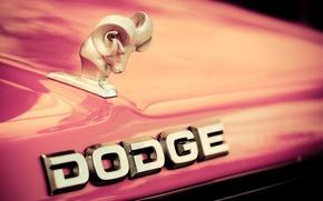 Картинка капот, лого, Dodge, эмблема