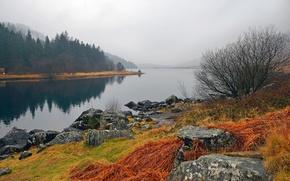 Картинка осень, небо, трава, пейзаж, горы, туман, озеро, камни, Уэльс, Snowdonia