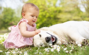 Обои трава, радость, цветы, детство, игры, ребенок, собака, play, grass, happy, мода, dog, flowers, child, baby, ...