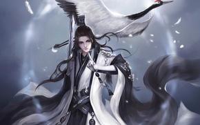 Обои птица, меч, перья, Парень