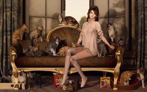 Картинка девушка, кошки, лицо, диван, коты, волосы, ножки, сидит