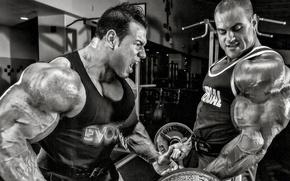 Картинка поза, мышцы, штанга, muscles, мотивация, бицепс, gym, bodybuilder, Эван Центопани, Evan Centopani