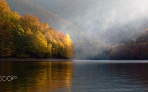 Обои осень, деревья, природа, река