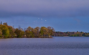 Картинка осень, небо, облака, деревья, птицы, озеро