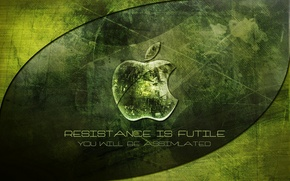 Обои зеленый, apple, mac