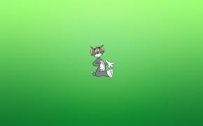 Обои кот, взгляд, удивление, минимализм, Том и Джерри, Tom and Jerry, зеленоватый фон
