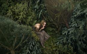Картинка девушка, ёлочки, иголочки, Lichon