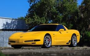 Картинка Z06, Corvette, Hybrid, SP540A, - 19