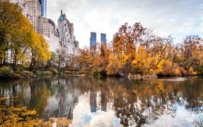Картинка осень, город, парк, небоскребы, USA, америка, сша, New York City, нью йорк