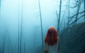 Обои туман, Lichon, девушка, лес, волосы