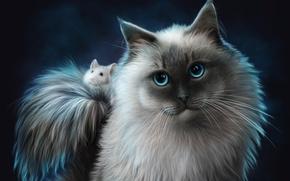 Обои кот, кошка, друзья, животные, мышь
