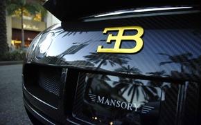 Обои veyron, carbon, бугатти, supercar, суперкар, Bugatti, вейрон, black, карбон, черный, mansory