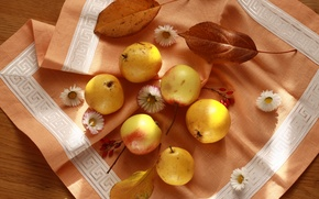 Обои салфетка, натюрморт, красиво, фрукты, груши, яблоки, осень