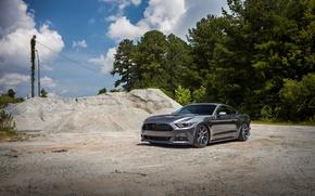 Картинка Mustang, Ford, Steel, 2015