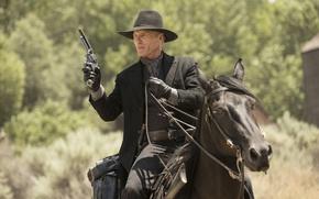 Картинка оружие, лошадь, кадр, шляпа, перчатки, сериал, ковбой, револьвер, вестерн, TV Series, Ed Harris, Westworld, Мир ...