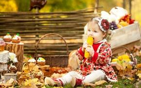 Картинка осень, листья, корзина, кукуруза, платье, девочка, girl, маленькая, выпечка, autumn, декор, baby, basket