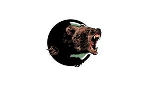 Картинка морда, медведь, пасть, клыки, рык