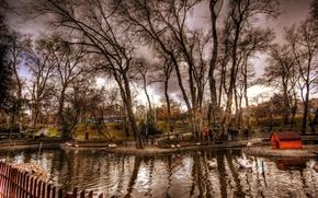 Картинка осень, деревья, пруд, фото, обработка, Nature, trees, autumn, pond, fall