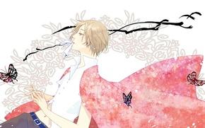 Картинка арт, парень, Natsume Yuujinchou, Нацуме