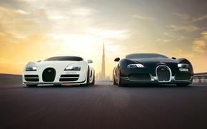 Обои supersport, dubai, veyron, bugatti